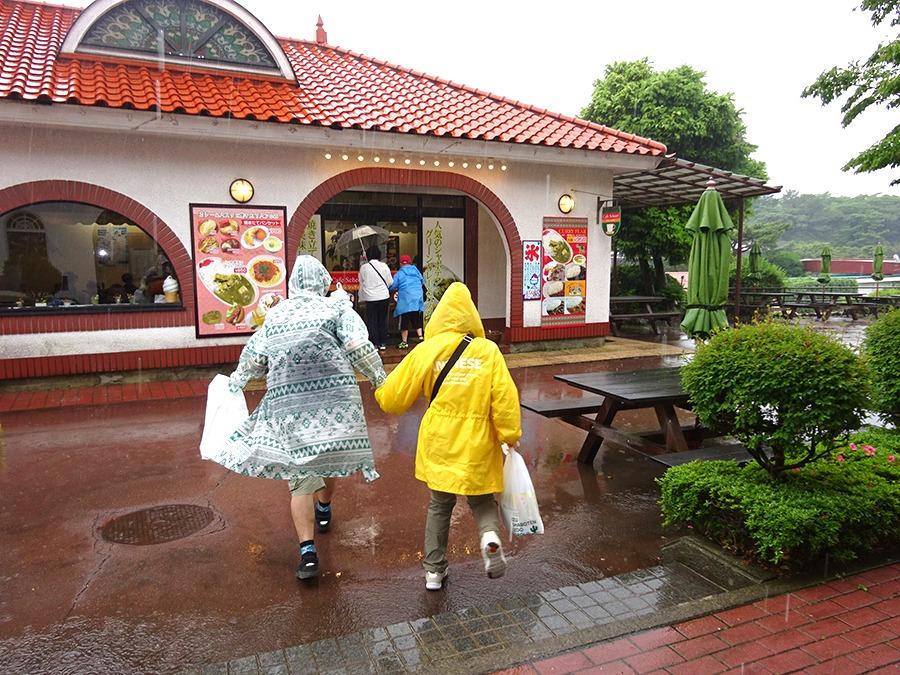 雨の日のバス旅行